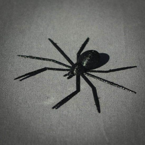 Impression 3D - araignée 1